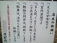 P1050185t.jpg